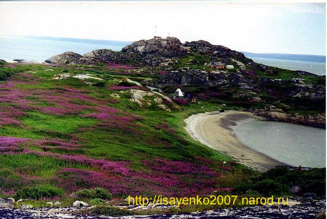 http://isayenko2007.narod.ru/tundra1.jpg
